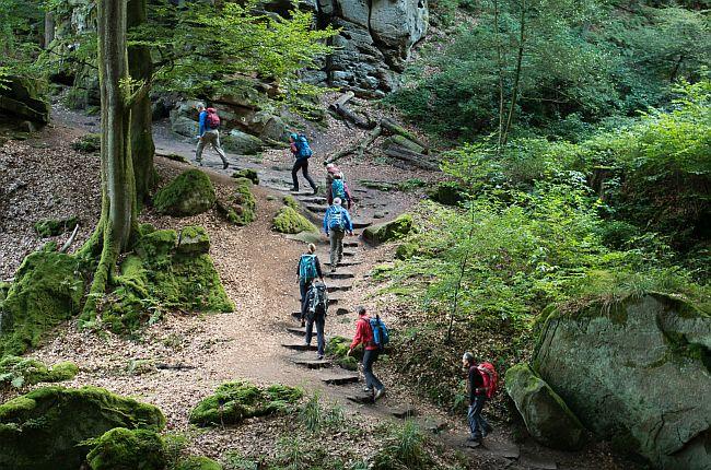 Buntsandsteinpfade vom Feinsten beim KT Mullerthal Trail Route 2 mit Jens © Deutscher Alpenverein Sektion Rheinland-Köln