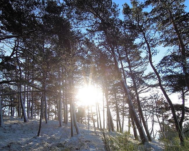 Der Sonne entgegen bei der winterlichen Konditionseinheit rund um Staffel mit Jens © Deutscher Alpenverein Sektion Rheinland-Köln