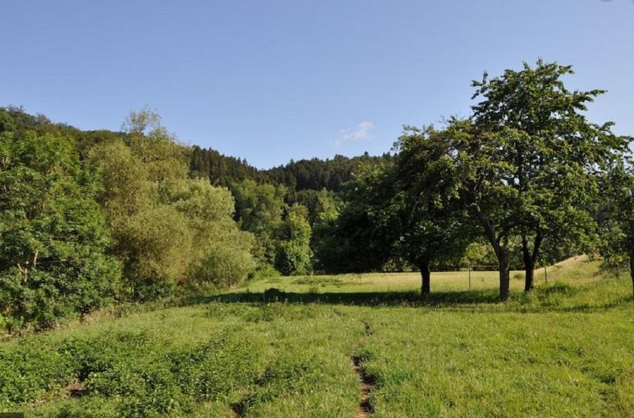Bergisches Land © Deutscher Alpenverein Sektion Rheinland-Köln